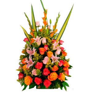 Flores en la paz cesar