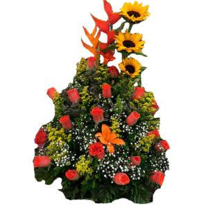 Rosas y frutas en valledupar