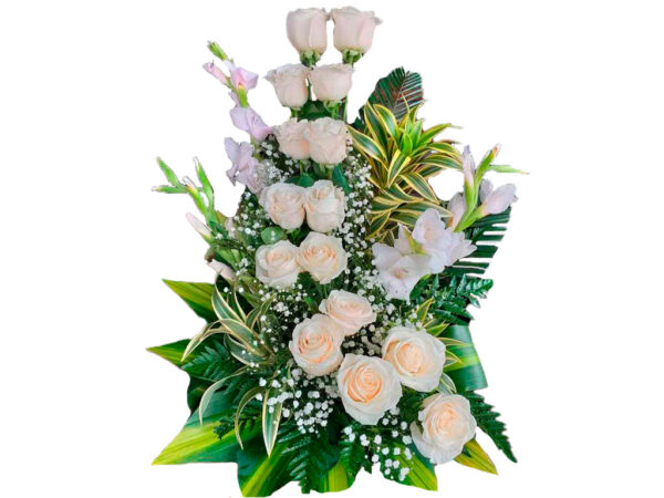Rosas blancas en valledupar