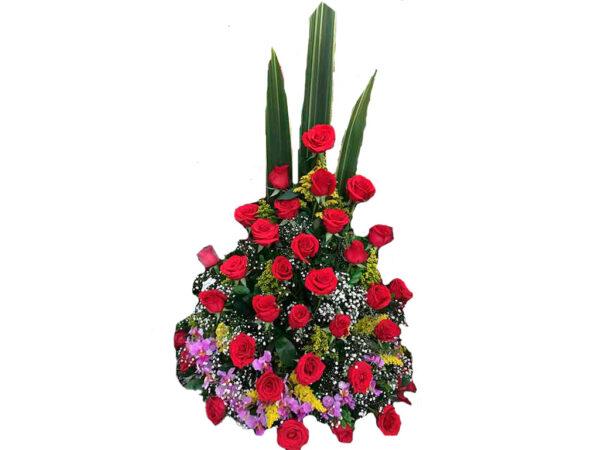 Rosas valledupar floristería